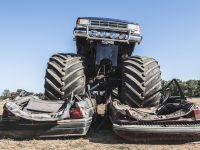 monster trucks monster truckz