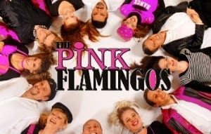 Pink Flamingos Band Booking Agency