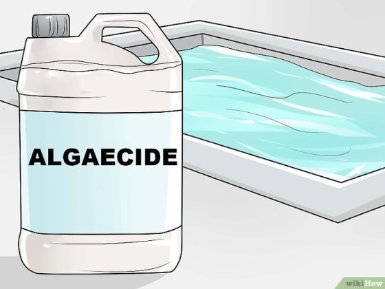 Immagine titolata Eliminate and Prevent Green Algae in a Swimming Pool Step 13