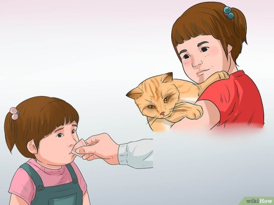 Immagine titolata Know if a Child Is Allergic to Cats Step 15