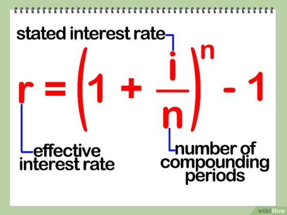 Immagine titolata Calculate Effective Interest Rate Step 3
