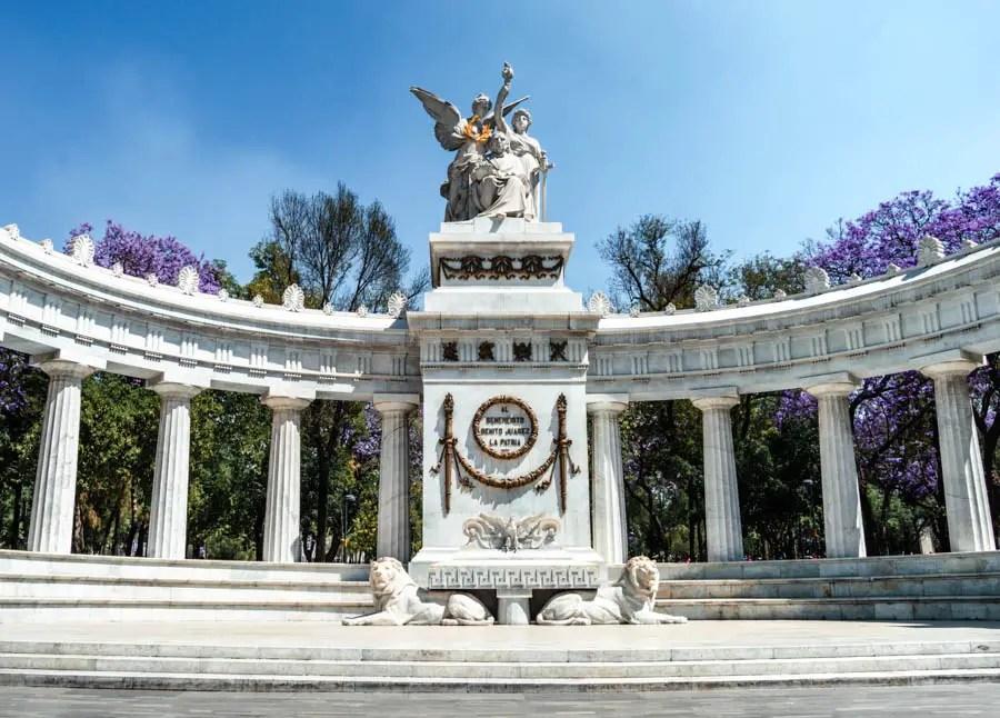 Jacarandas in Mexico City