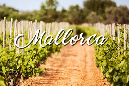 D.O Mallorca