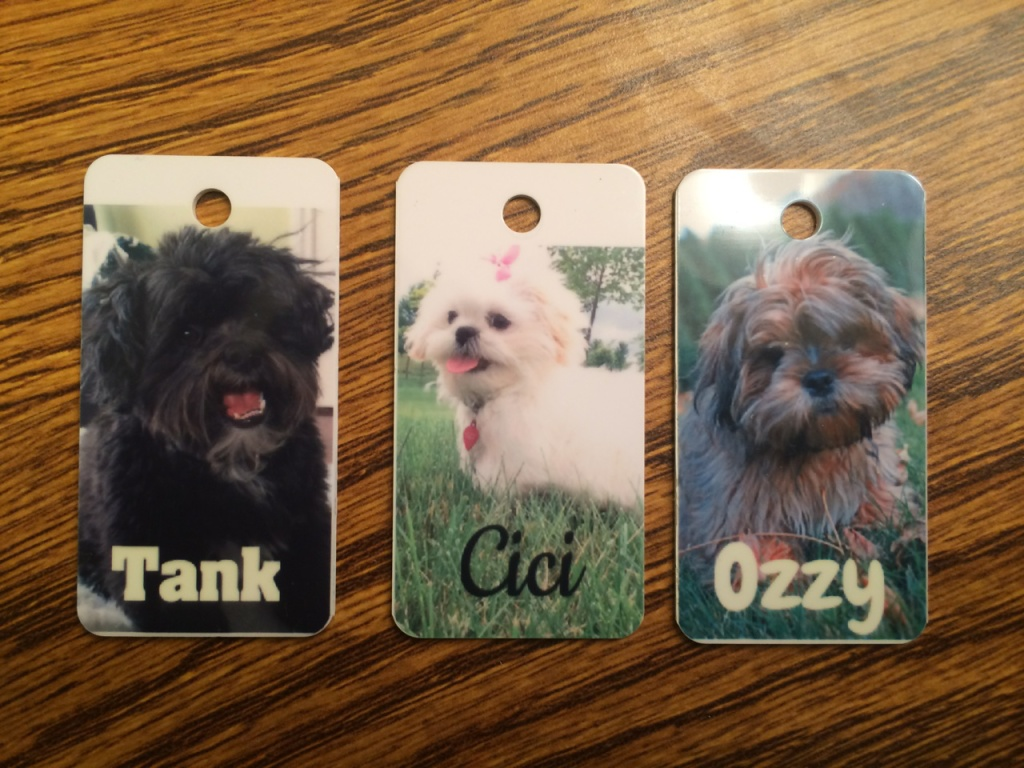 Jolly Awesome Pet Tags by Dura-tags™ Review and Giveaway!