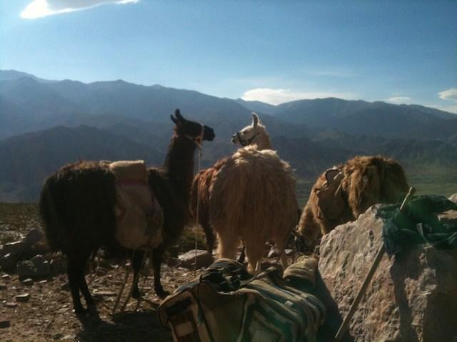 Los tres amigos in Quebrada de Humahuaca in Jujuy, Argentina.