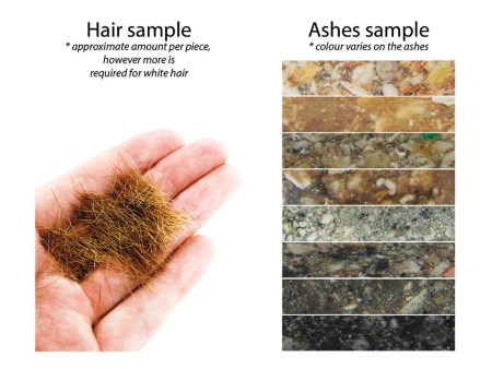 hair and ashes sample