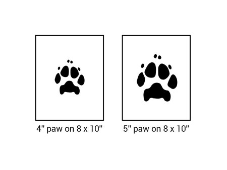 digital paw print sizing