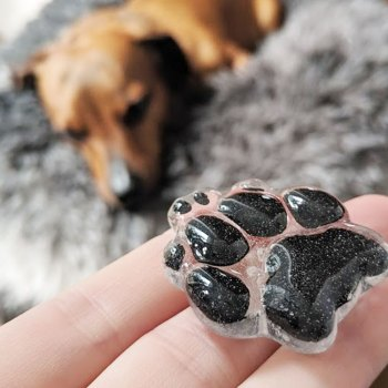 Pawcket Stone – Created from your pet's actual paw print