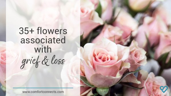 35+ Flowers Associated with Grief and Loss