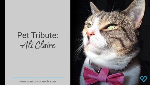 Pet Tribute: Ali Claire
