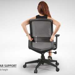 Best Back Support For Office Chair Singapore Christmas Covers Pattern Bingo Midback Comfort Design The