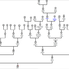 How To Draw A Family Tree Diagram Wiring Diagrams Explained Exponential And Trigonometry Notes