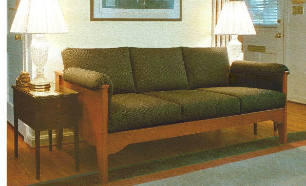 chairs for handicapped animal plush chair sofas and the elderly, handicapped, those with special needs or difficulty ...