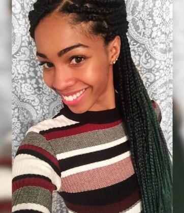 Green Ombre Box Braids | Braiding Hair from Aliexpress