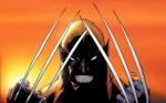 wolverine criss cross blades