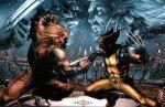 Wolverine Vs Sabertooth