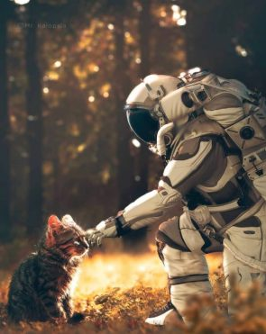 Astronaut Petting A Kitty