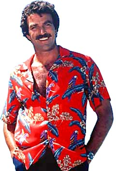 Character Magnum PI of the group US Navy