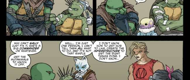 Teenage Mutant Ninja Turtles #102 Review