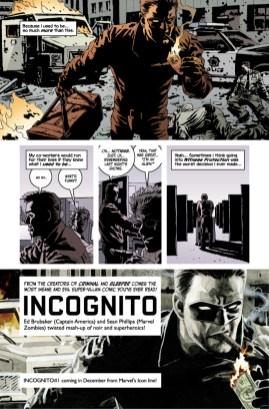 incognito_01_teaser2