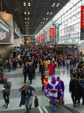 Nycc017