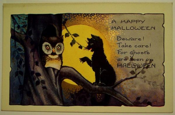 Owl and black cat 1