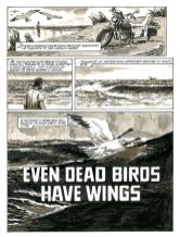 DeadBirdsp1