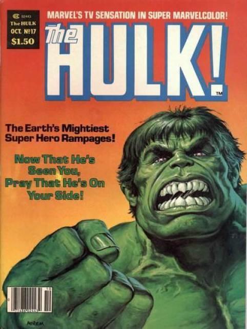 17753-2954-19844-1-hulk.jpg