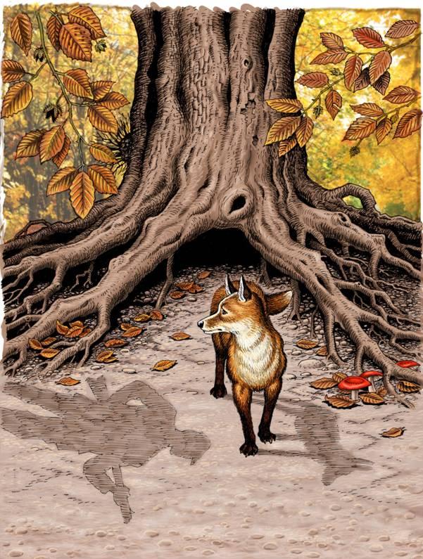 marney the fox.jpg