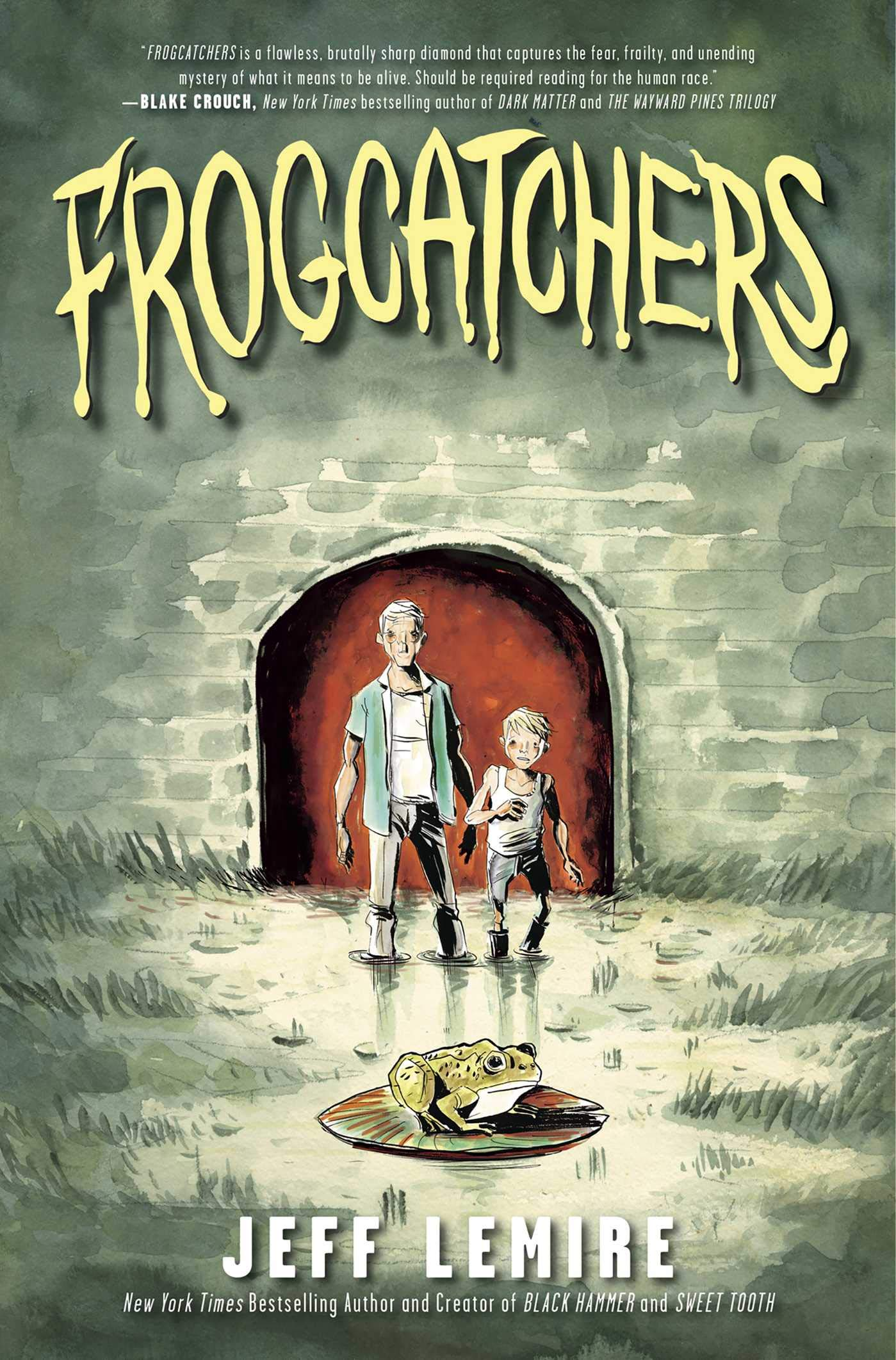 Graphic Novels for Fall 2019: Frogcatchers