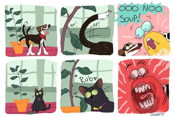 Little Tunny's pets vs the rubber tree