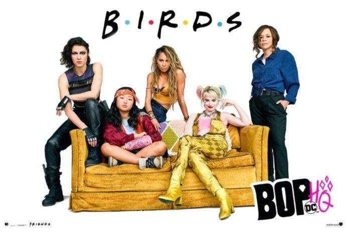 birds of prey friends