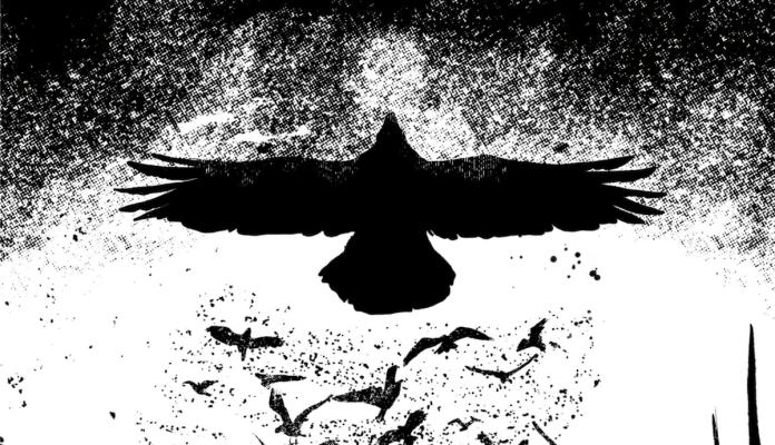 crow eternal night