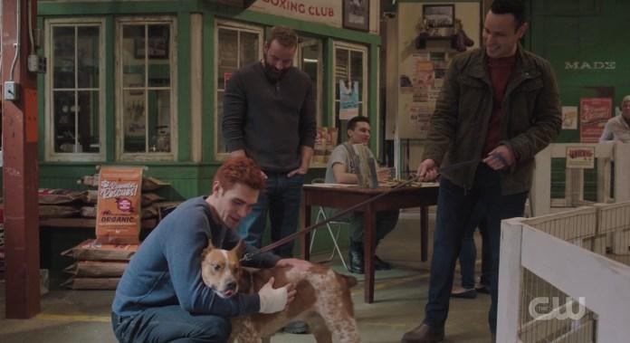 Riverdale pet adoption event