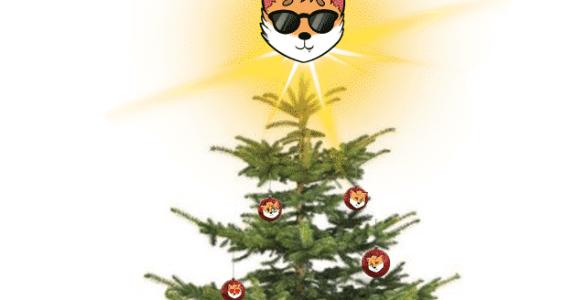 Frohe Weihnachten! 5