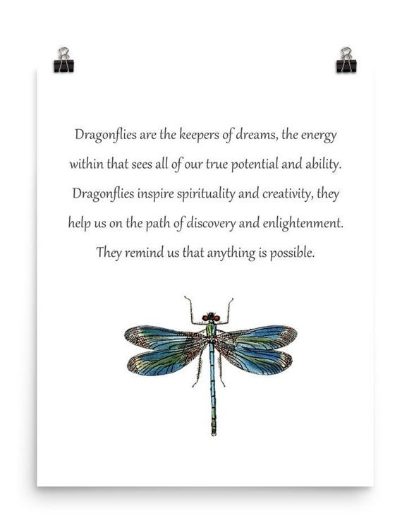 dragonfly dream keepers dragonfly art dragonfly poster dragonfly quotes dragonfly print of dragonfly dragonfly meaning multi sizes