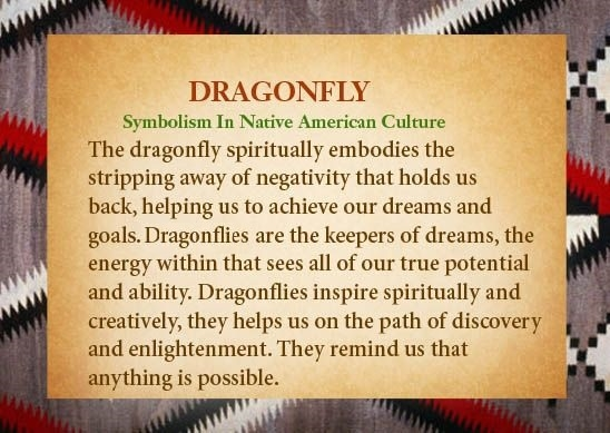 inspirational dragonfly quotes gifts photos