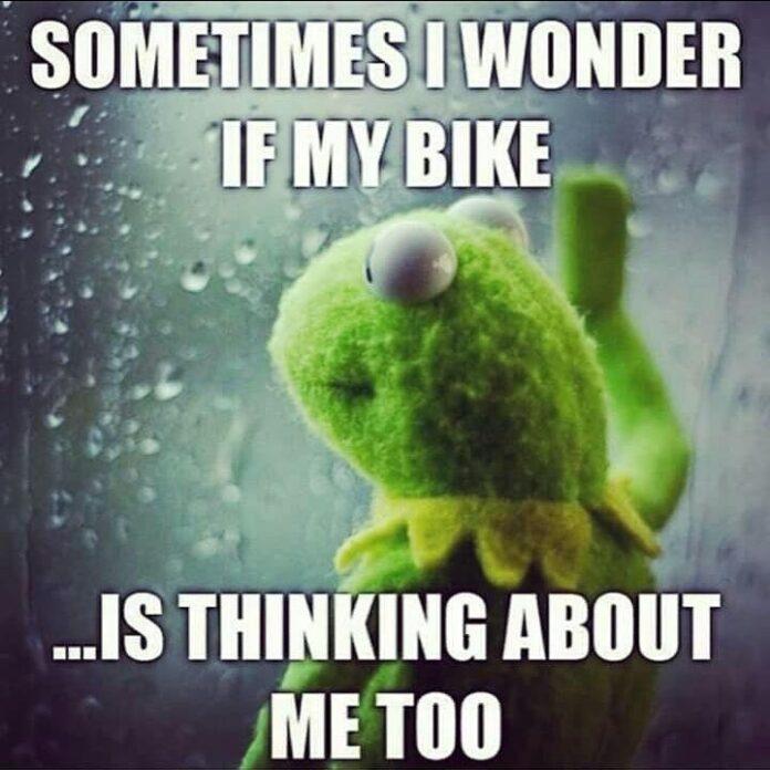 kermit the frog bike quote
