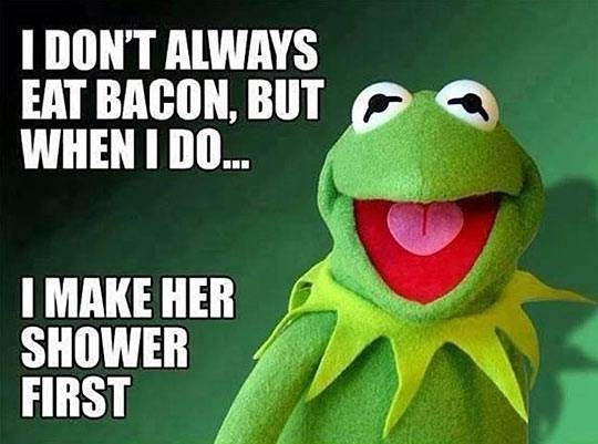 other funny kermit frog bacon quote photo