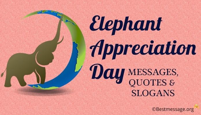elephant appreciation day messages elephant quotes slogans