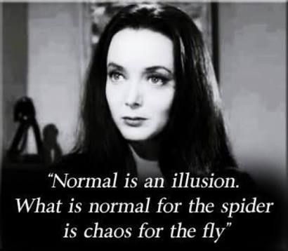 image result for morticia addams quotes normal is an