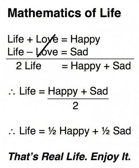 pin on math humor