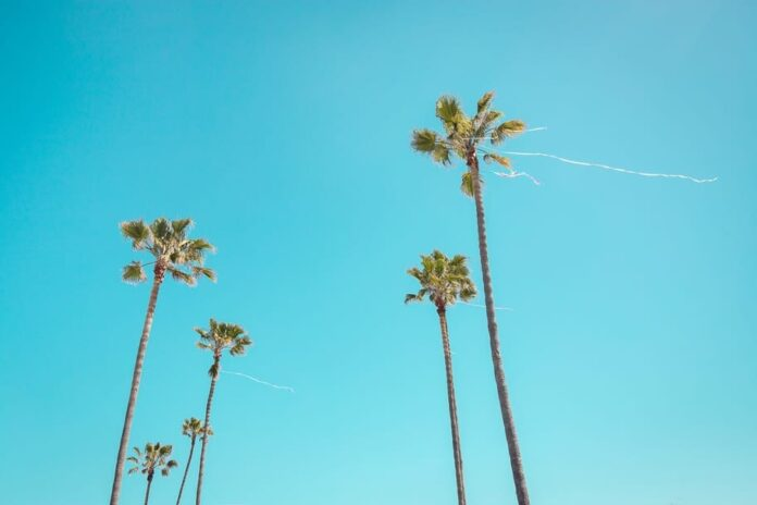 100 california quotes for inspiring instagram captions