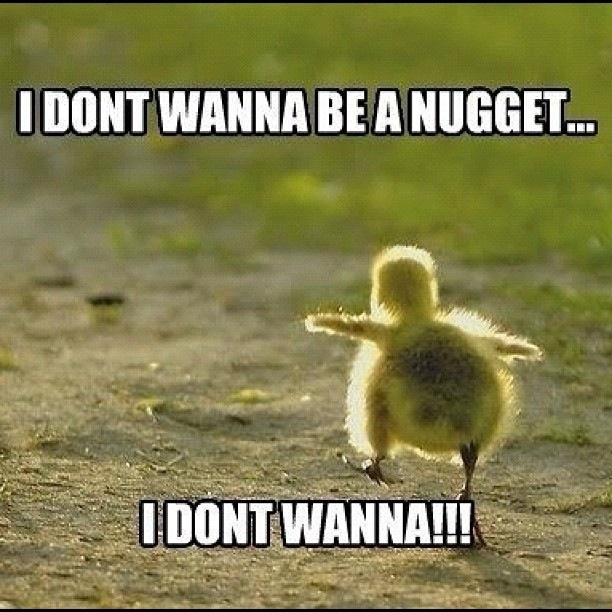 31 hilarious chicken nugget memes quotes