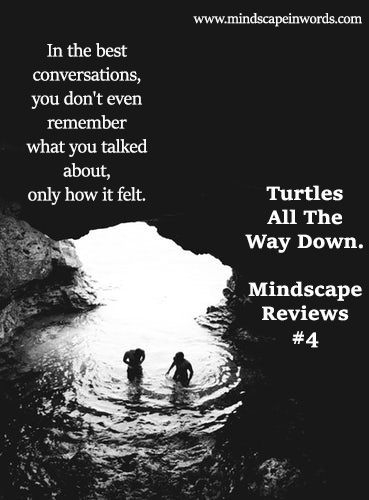 turtles all the way down mindscape reviews 4 john