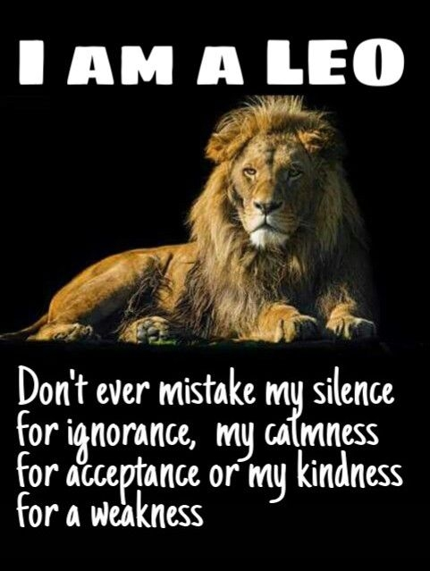 sweet and best quotes for family and friends leo lioness quotes