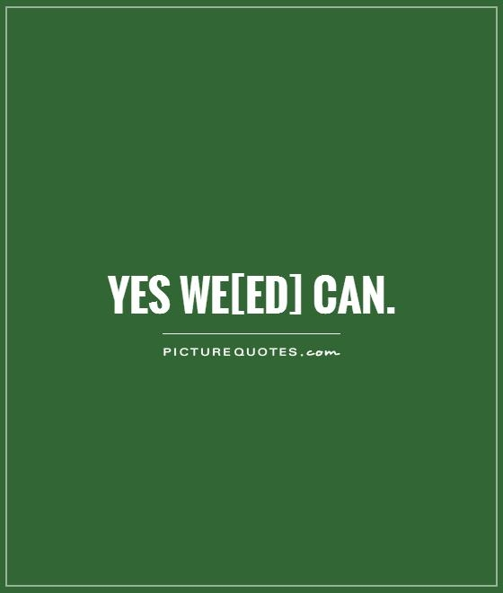 funny stoner quotes and sayings quotesgram