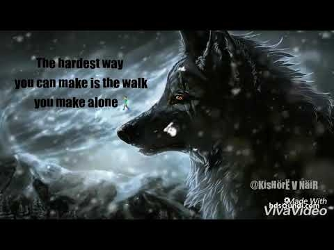 lone wolf motivation quotes youtube