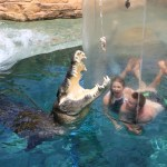 Swim with a crocodile in The Cage of Death – The ultimate Aussie Adventure