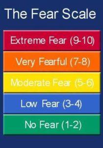 Fear scale